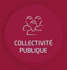 Collectivité publique
